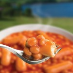 Wayfayrer  Camping Food - Beans & Sausages