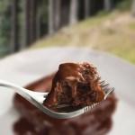 Wayfayrer  Camping Food - Chocolate Sponge
