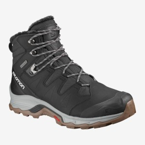 Salomon Quest Winter GTX Phantom/Vapou