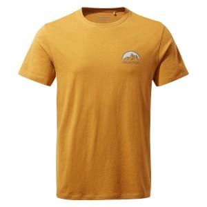 Helly Hansen Dry Stripe T Shirt Black
