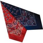 Large Cotton Handkerchiefs - Paisley Print