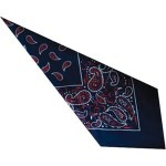 Large Cotton Handkerchiefs - Paisley Print
