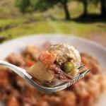 Wayfayrer Camping Food - Beef Stew & Dumplings